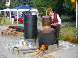 festivalsliva1
